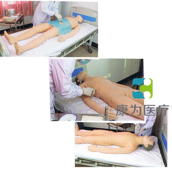 """广东""""康为医疗""""综合穿刺术高仿真标准化病人(腹腔、骨髓、深静脉、淋巴结、膀胱)"""