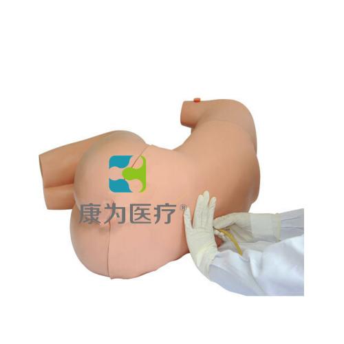 """南昌""""康为医疗""""腰椎穿刺训练仿真模拟人,腰椎穿刺模拟人,成人腰椎穿刺模型"""
