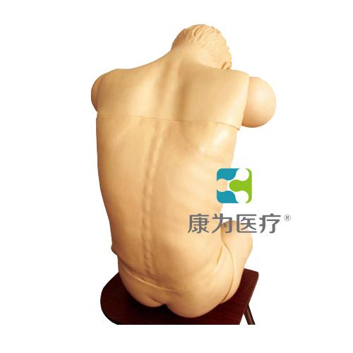 """吉安""""康为医疗""""成人综合穿刺术技能训练模拟人(前倾坐位)"""