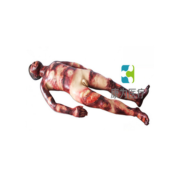 """吉安""""康为医疗""""成人全身整体烧烫创伤急救护理训练操作模型"""