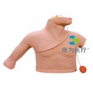 """""""康为医疗""""中心静脉穿刺插管训练模型,中心静脉穿刺置管操作模型 Heart Catheterization Simulator,心脏导管插入训练(动静脉伴行)模型"""