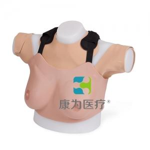 """""""康为医疗""""乳房检查诊疗模型(高级)"""