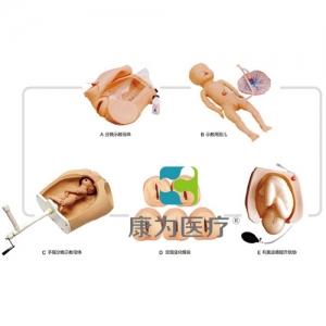 """福建""""康为医疗""""高级腹部触诊、分娩机转综合模型"""