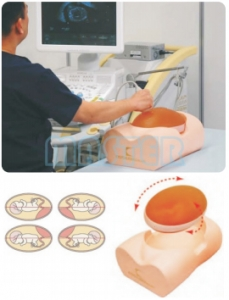 孕妇超声检查模型,产品编号:US-7