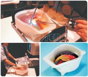 腹部手术和腹腔镜超声模型,产品编号:US-3