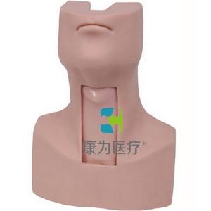 """""""康为医疗""""高级环甲膜穿刺和切开训练仿真模型"""