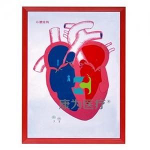"""""""康为医疗""""心脏解剖(示血液流向)浮雕模型"""
