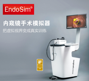 内窥镜手术模拟器技能模型