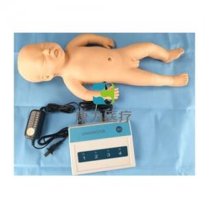 早产儿生长指标评定及护理训练模型