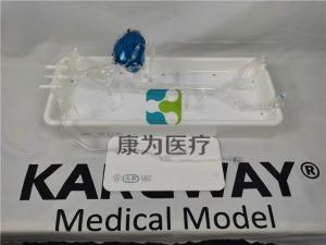 产品名称:冠脉介入模拟器,冠状动脉介入手术模块