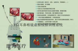 VST耳鼻喉镜虚拟模拟训练系统,耳鼻喉镜手术训练模拟器